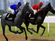 Horse Racing Simulation